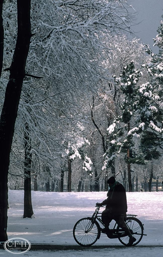 Shahr-e-Nau Park, Kabul, Afghanistan 2003